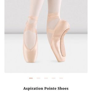 Bloch ballet pointe shoes